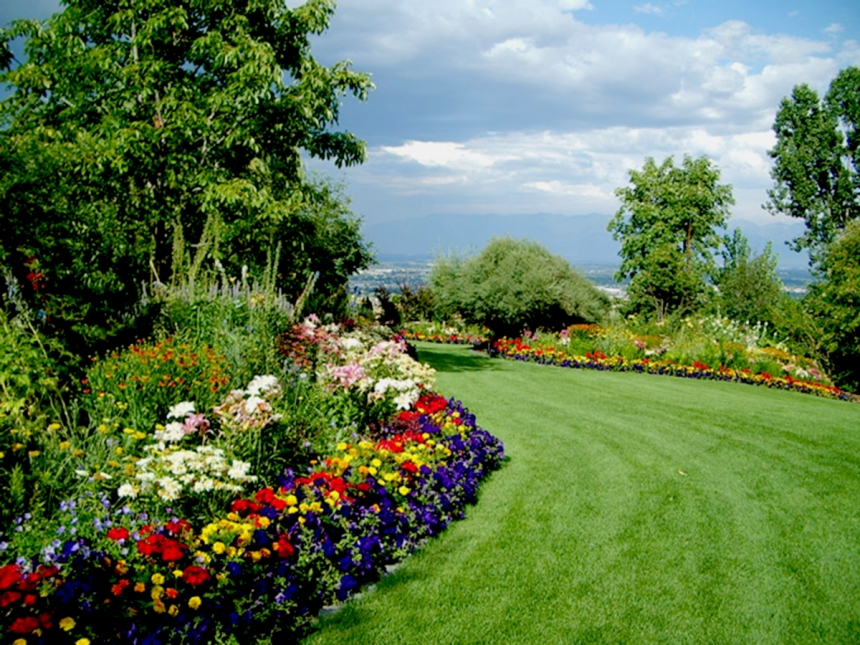 Perfectly manicured garden...