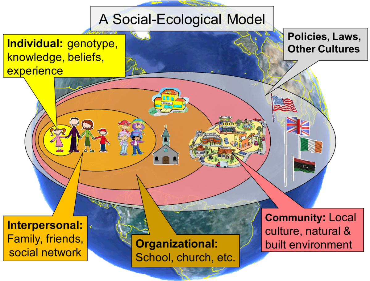 Social Ecology Model:  A Model of a Pro-Active Approach