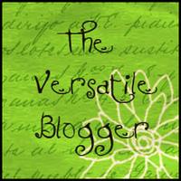 wpid-versatileblogger11