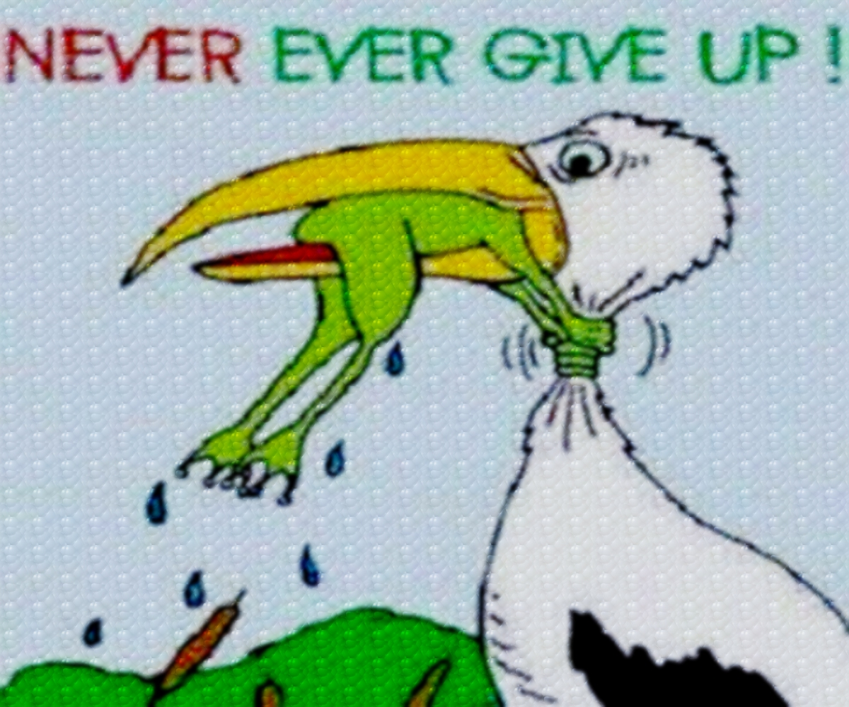 Never Ever Give Up!