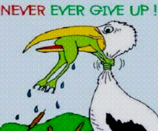 never-give-upeditwpattern