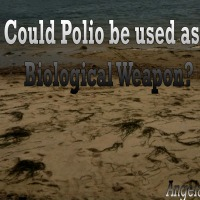 Polio: Should We Be Concerned?Concerned but no evi…
