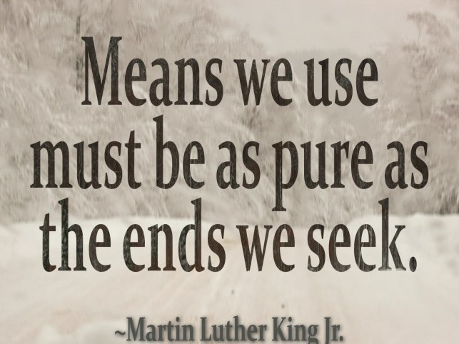 Martin Luther KIng means-we-use.