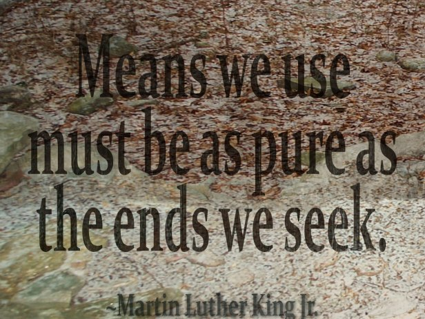 means-we-use, Martin Luther KIng