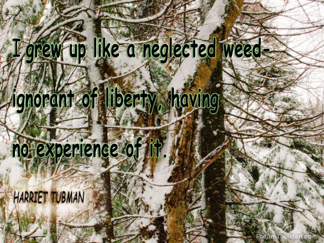 Harriet-Tubman-#quote-Thoughts-in-the-woods123.