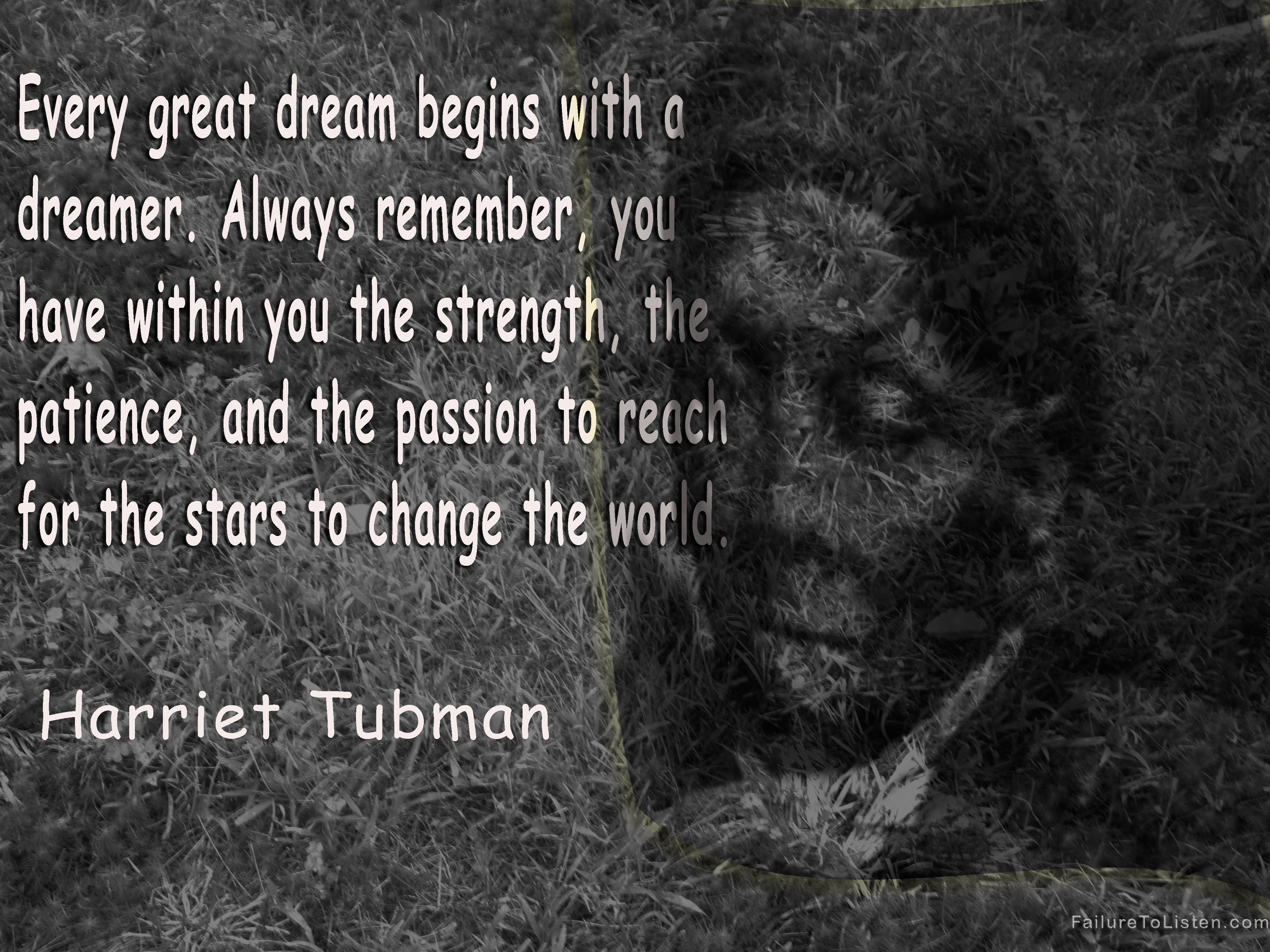 Harriet-tubmanpatienceimage12