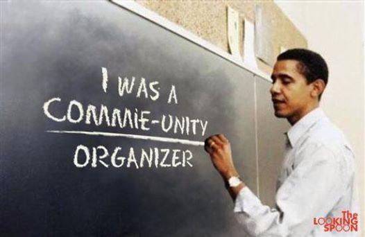 insult obama