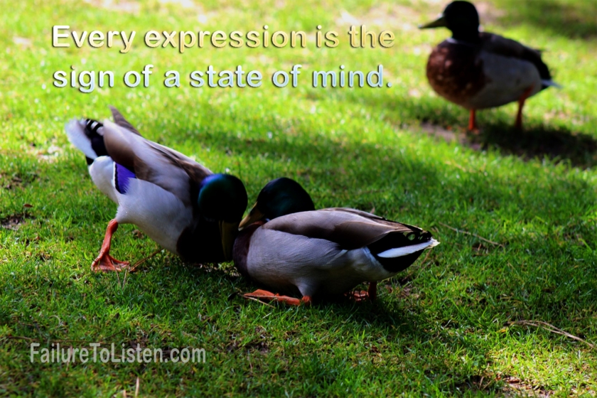 Rumi: Quotes For the Mind – Failure to ListenQuotes About Failure Rumi