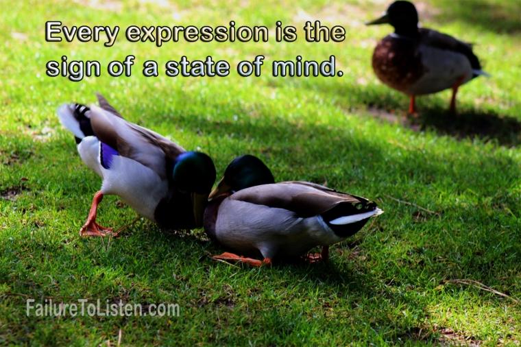 Rumi-state-of-mind.222267